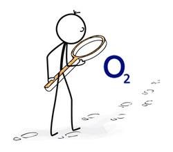 Handytarife mit viel Datenvolumen: o2 Free
